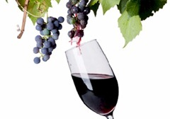 wine_grapes_glass